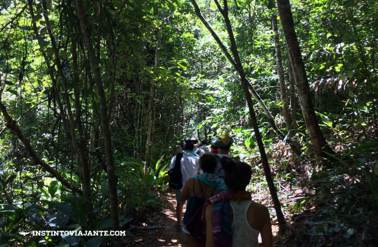 trilha prainha itacaré ba