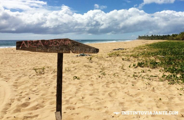 praia do cassange peninsula de marau camamu bahia dicas de viagem