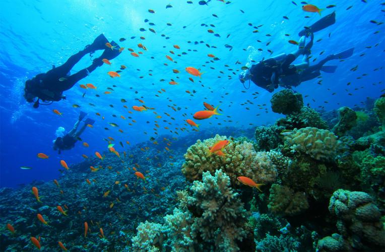 Bastismo de mergulho em Arraial do Cabo no RJ