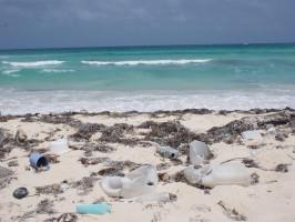 Não deixe lixo em praias.