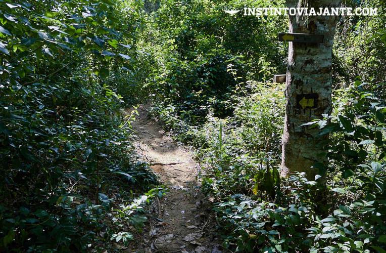 No meio da travessia Tupinambá