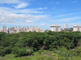 DDD 16 - DDD Ribeirão Preto - SP