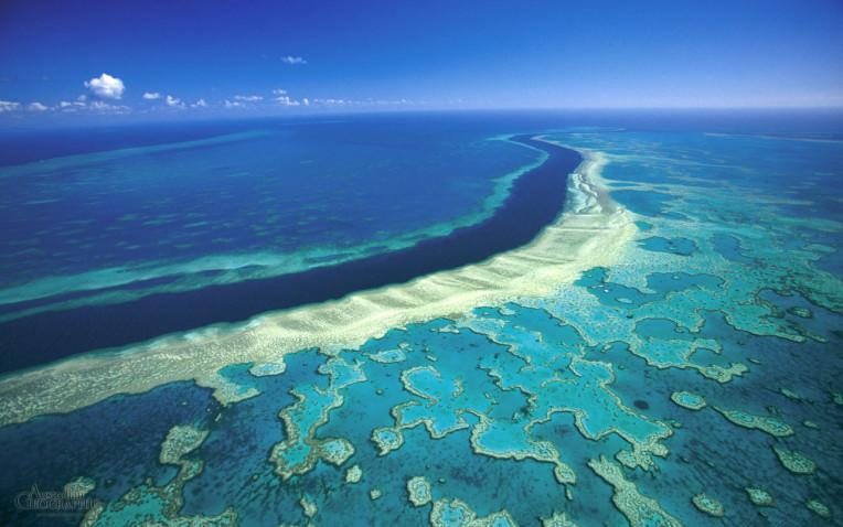 Grande Barreira de Corais, Cairns, Australia