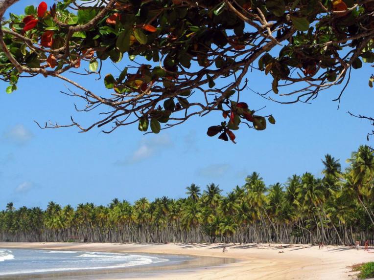 Praia Boipeba - Bahia - Praia da Cueira