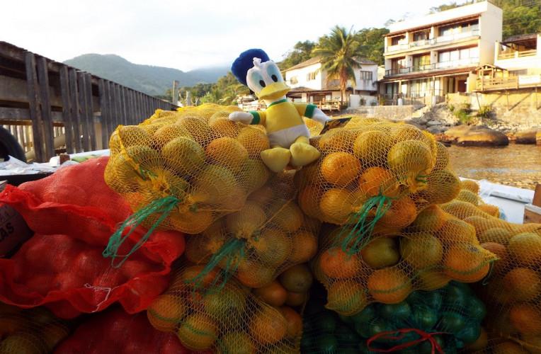 viajar sem dinheiro carona barco de fruta
