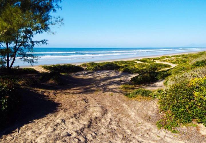 Restinga e Praia das Pedrinhas, parte sul da Ilha Comprida/SP