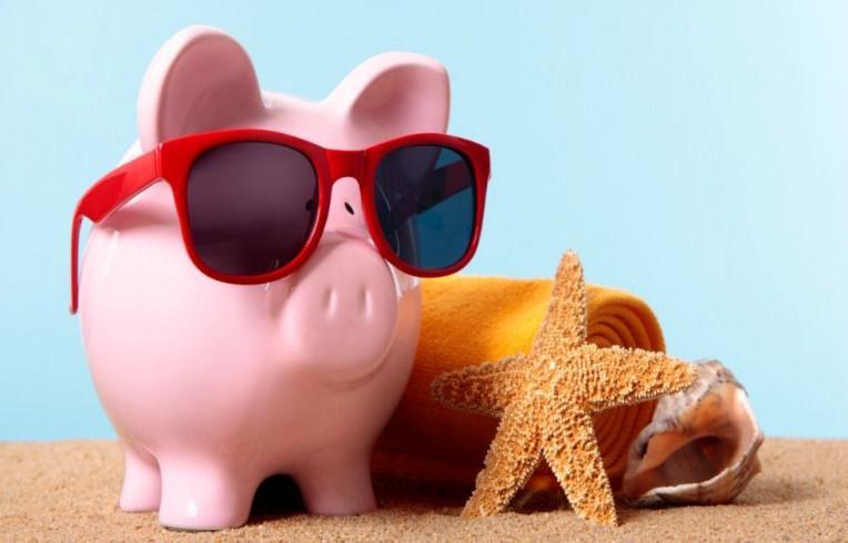 Porquinho curtindo uma praia - dicas de economia de viagem