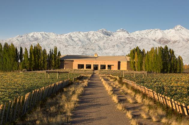 Bodegas Salentein, em Mendoza. Foto: decanter.com
