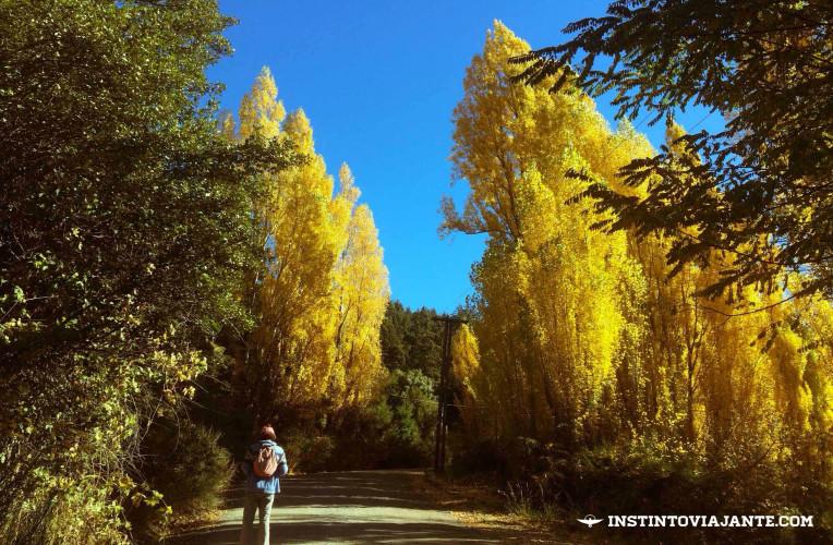 Arredores do Lago Gutiérrez, em Bariloche, durante o outono - Instinto Viajante